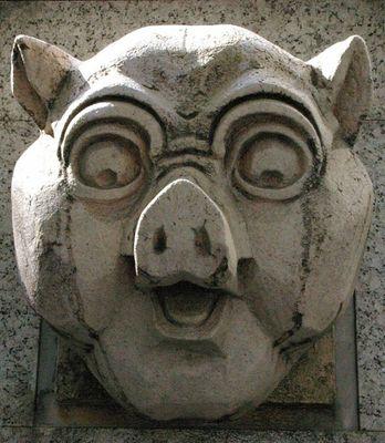 豚1.jpg